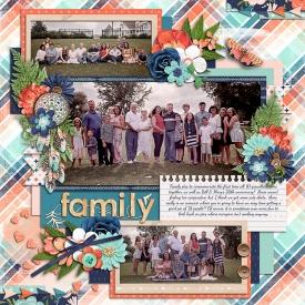 WIfamilypicsweb.jpg