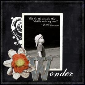 WONDER_500.jpg