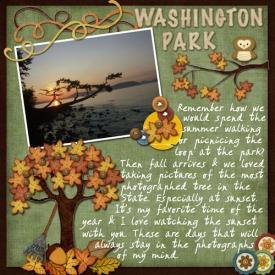 Washington-Park-Shutterbug-.jpg
