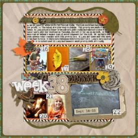 Week_38.jpg