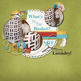 Whats_in_the_basket.jpg