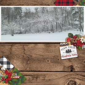 WinterWonderland_SSD.jpg