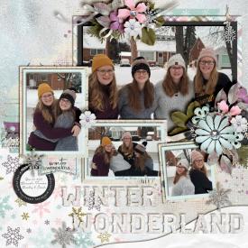 Winter_Wonderland_Dec_25_2020_smaller.jpg