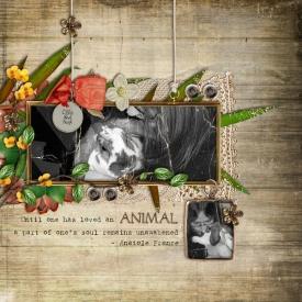 animallove_forweb.jpg