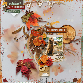 autumnwalk-copy.jpg