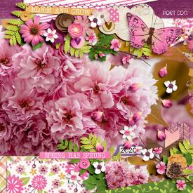 bloomandgrow-copy.jpg