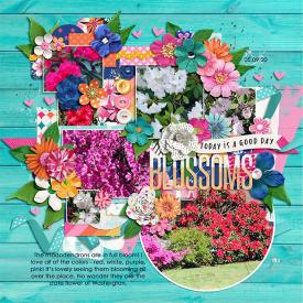 blossoms_web.png