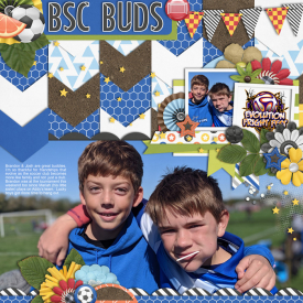 bsc-buds.jpg