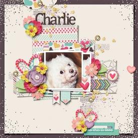 bsmith-CharlieSmiles-sm.jpg
