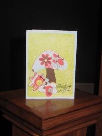 card30.jpg