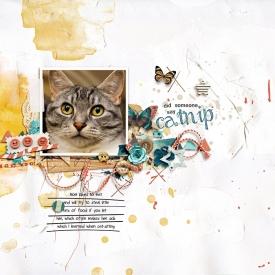 catnip-copy.jpg
