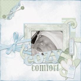 cozy_comfort_copysmallb.jpg