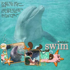 dolphin-swim-before-i-die.jpg