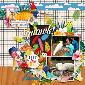 eve-20140706-feed-the-birds-web.jpg