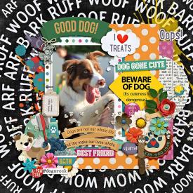 eve-20191225-dog-cute-web.jpg