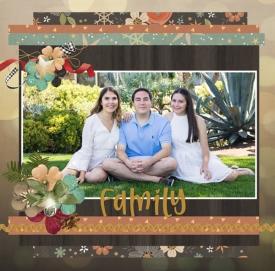 family510.jpg