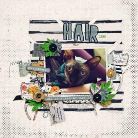 hairlesscat-copy.jpg