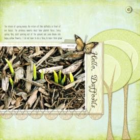 hello-daffodils-500.jpg