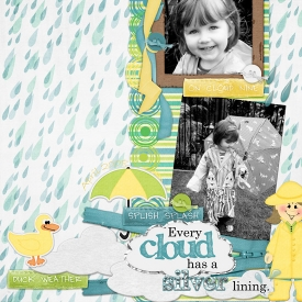 hroselli-duckweather-rainday.jpg