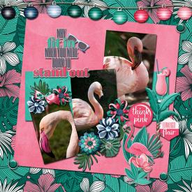 jcd-flamingoflair.jpg