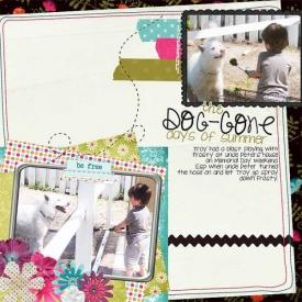 june_doggone_gallery.jpg