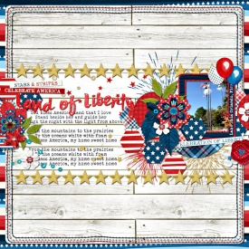 land_of_liberty.jpg