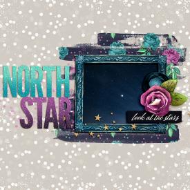 msbamf2you-northstar.jpg