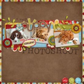 puppy-photoshoot.jpg