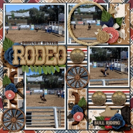rodeo700.jpg