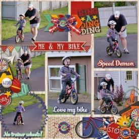 rsz_dt_dd_dombike2007_print.jpg