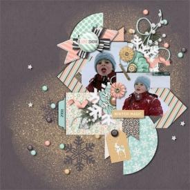 rsz_tps_snowflake_2008_web_.jpg