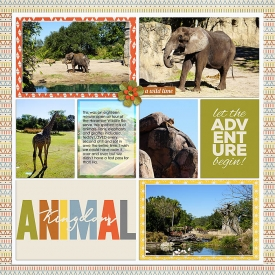 s_2019-1-29-animalkingdom2-right.jpg