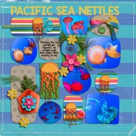 sea-nettle.jpg