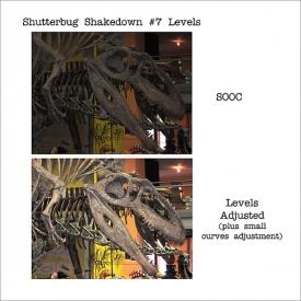 shutterbug-shakedown-7-600.jpg