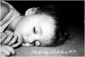 shutterbugshakedown16.jpg