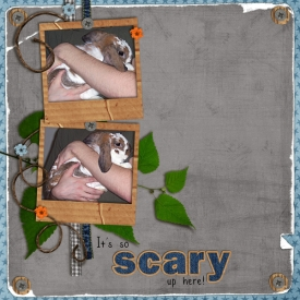 soscary_forweb.jpg