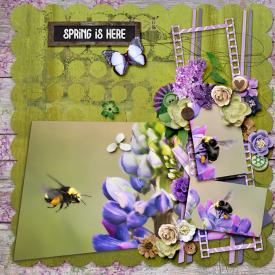 springishere-copy1.jpg
