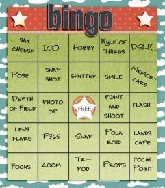 ssd_bingo_nsd1.jpg