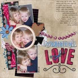 too_much_love_copysmallb.jpg