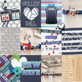 volleyball_sm.jpg
