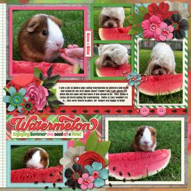 watermelonrightweb.jpg