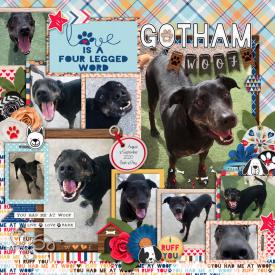 web_08-2020_Gotham-PP50-megscmmullens-ruffyou.jpg