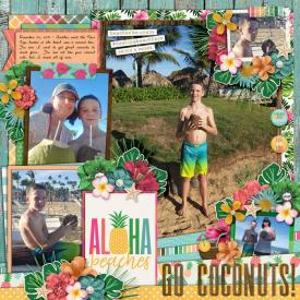 web_12-23-2019_Coconuts-cschneider-HP218-ayimm-alohabeaches.jpg