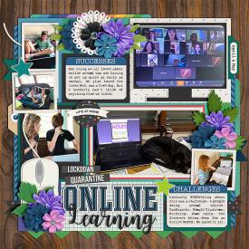web_OnlineLearning.jpg