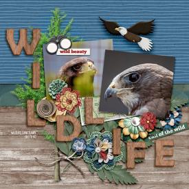 wildbeauty-copy.jpg