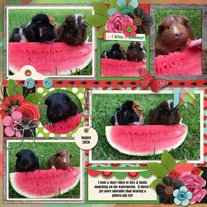 watermelonleftweb