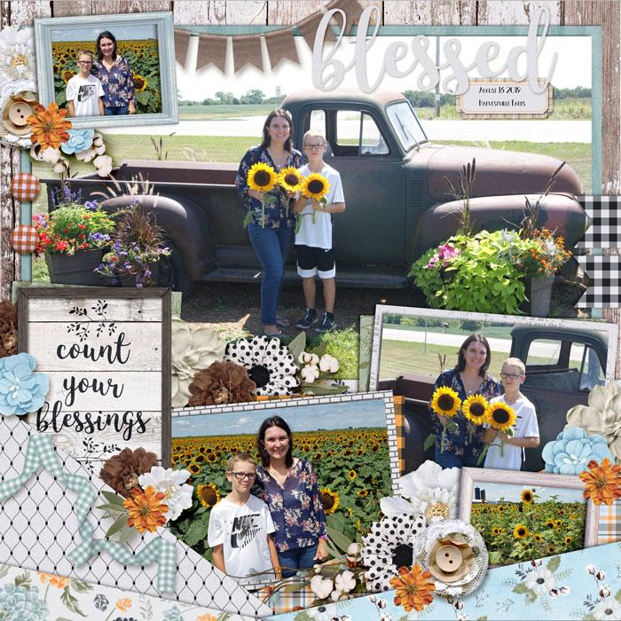 web_08-16-2019_Harvestville-cs-HP218-megsc-farmhomestead
