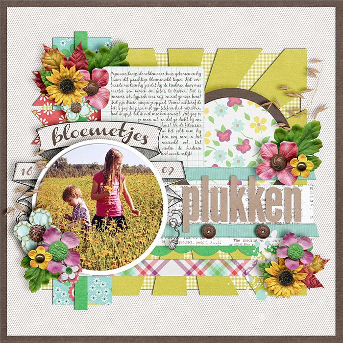12-09-16-bloemetjes-plukken