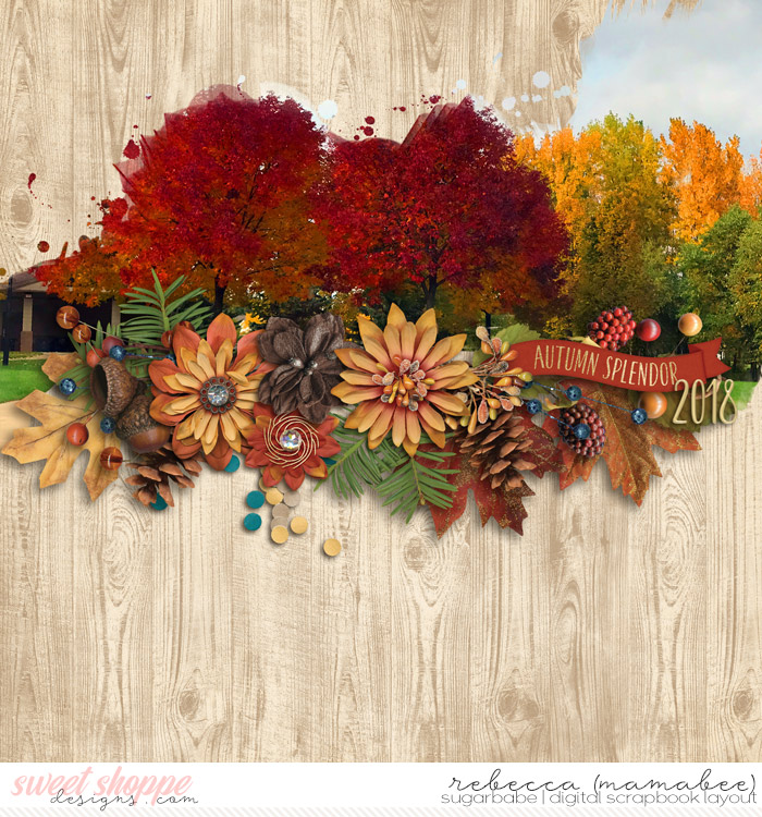 2018_10_9-autumn-splender