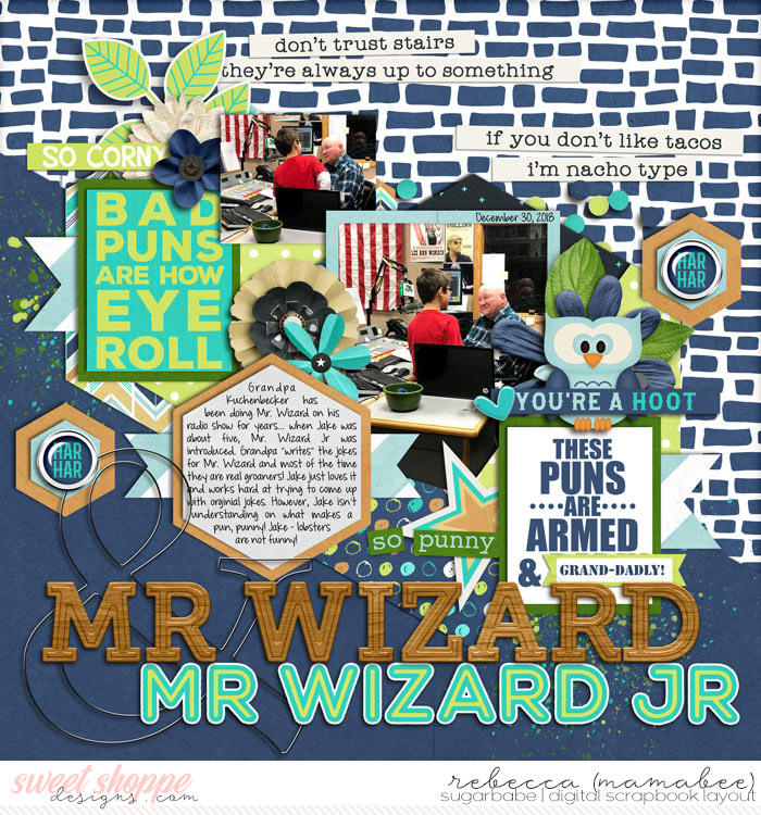 Mr Wizard and Mr Wizard Jr